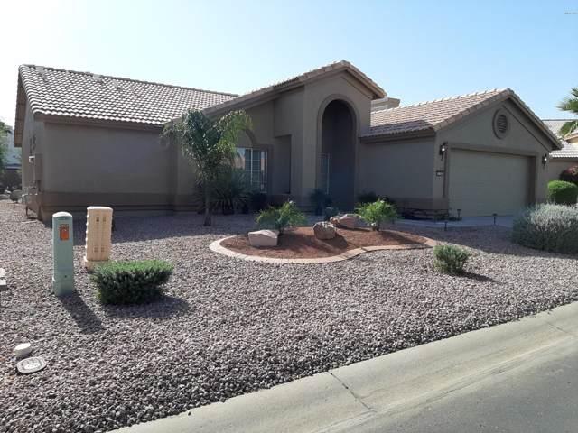 3528 N Casper Drive, Goodyear, AZ 85395 (MLS #5994167) :: The Kenny Klaus Team