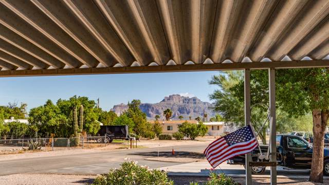 1435 E 23RD Avenue, Apache Junction, AZ 85119 (MLS #5994383) :: The Kenny Klaus Team