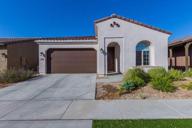 2822 E Fraktur Road, Phoenix, AZ 85040 (MLS #5994417) :: neXGen Real Estate