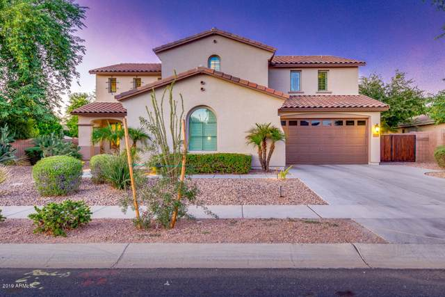 96 W Lynx Way, Chandler, AZ 85248 (MLS #5996071) :: Relevate | Phoenix