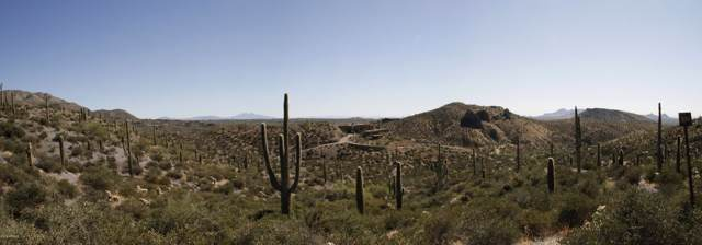 9107 E Grapevine Pass 336 Pass, Scottsdale, AZ 85262 (MLS #5997243) :: Revelation Real Estate