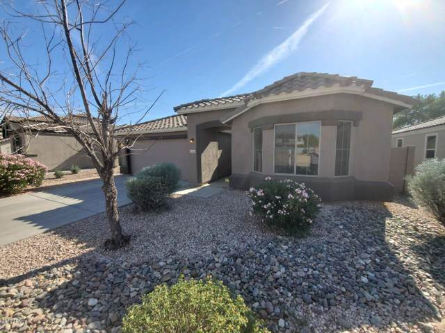 25549 W Milada Drive, Buckeye, AZ 85326 (MLS #5998339) :: The Kenny Klaus Team