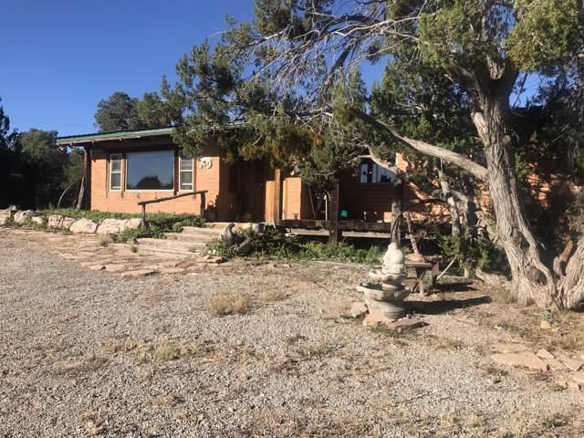 39090 W Old Highway 66, Seligman, AZ 86337 (MLS #5998350) :: Brett Tanner Home Selling Team