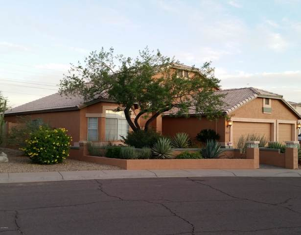 15067 S 40TH Place S, Phoenix, AZ 85044 (MLS #5998597) :: The Laughton Team
