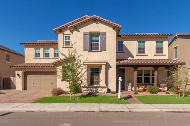 914 W Yosemite Drive, Chandler, AZ 85248 (MLS #5998736) :: The Daniel Montez Real Estate Group