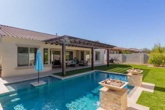 1638 W Dusty Wren Drive, Phoenix, AZ 85085 (MLS #5999337) :: Team Wilson Real Estate
