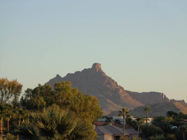 11028 N Regency Place, Fountain Hills, AZ 85268 (MLS #5999514) :: Midland Real Estate Alliance