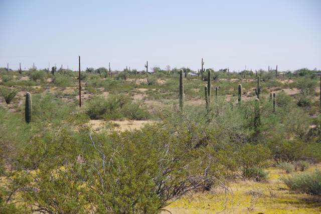 000 N. Of Castle Hot Springs, Morristown, AZ 85342 (MLS #5999832) :: The W Group