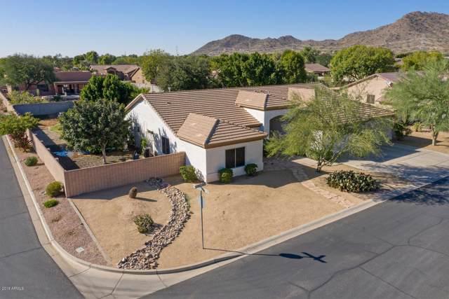 24018 N 81ST Drive, Peoria, AZ 85383 (MLS #5999977) :: The W Group