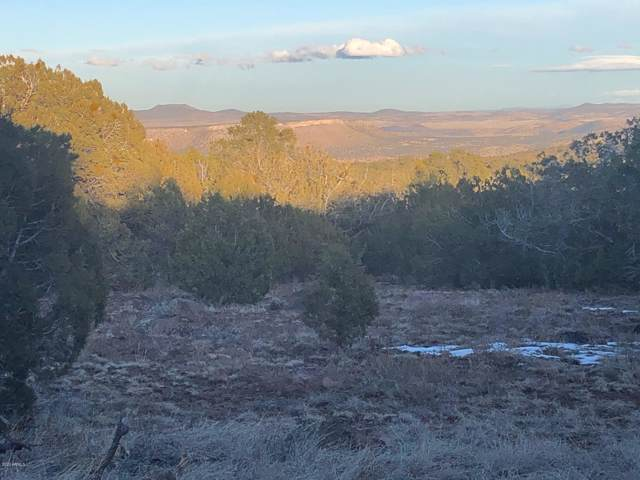Lot 656 Edge Ridge Road, Seligman, AZ 86337 (MLS #6000054) :: The Results Group