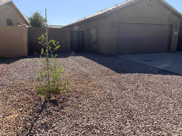 15943 W Central Street, Surprise, AZ 85374 (MLS #6000371) :: Revelation Real Estate