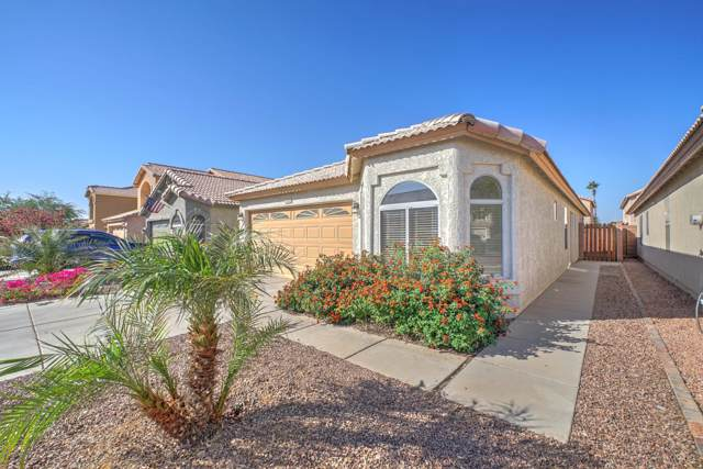 16620 S 45TH Street, Phoenix, AZ 85048 (MLS #6001524) :: Yost Realty Group at RE/MAX Casa Grande