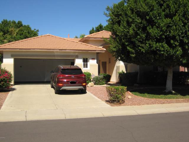 6782 W Avenida Del Rey, Peoria, AZ 85383 (MLS #6003276) :: Devor Real Estate Associates