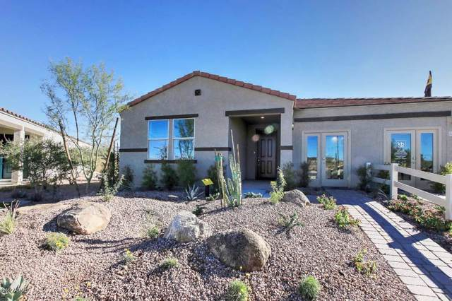 12951 E Walter Way, Gold Canyon, AZ 85118 (MLS #6003407) :: Cindy & Co at My Home Group