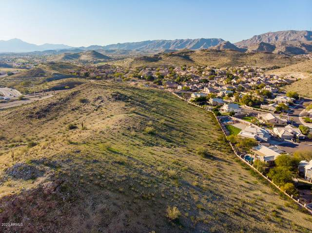 2457 E Glenhaven Drive, Phoenix, AZ 85048 (MLS #6003601) :: Devor Real Estate Associates