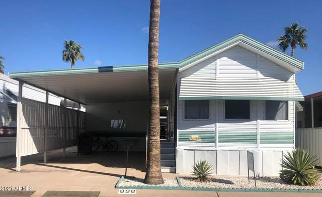 898 S Nightdigger Drive, Apache Junction, AZ 85119 (MLS #6004058) :: The Riddle Group