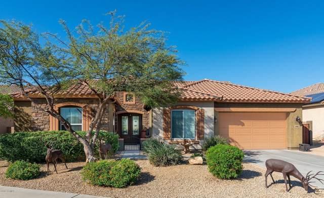 47882 N Navidad Court, Gold Canyon, AZ 85118 (MLS #6004115) :: Dijkstra & Co.