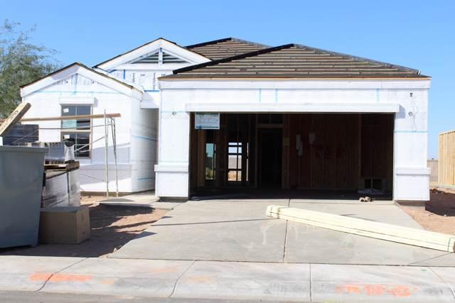 1667 N Westfall Trail, Casa Grande, AZ 85122 (MLS #6004400) :: Yost Realty Group at RE/MAX Casa Grande
