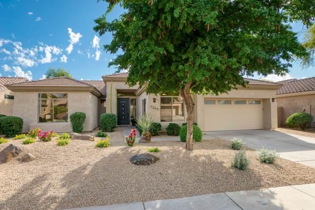 7269 E Wingspan Way, Scottsdale, AZ 85255 (MLS #6004632) :: Keller Williams Realty Phoenix
