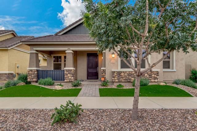 4225 E Ronald Street, Gilbert, AZ 85295 (MLS #6005555) :: Revelation Real Estate