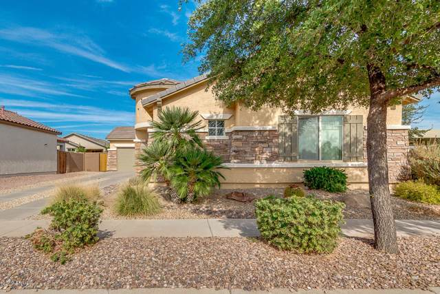 894 E Runaway Bay Place, Chandler, AZ 85249 (MLS #6005742) :: Revelation Real Estate