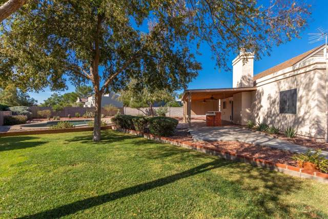 19614 N 9TH Street, Phoenix, AZ 85024 (MLS #6006457) :: Riddle Realty Group - Keller Williams Arizona Realty