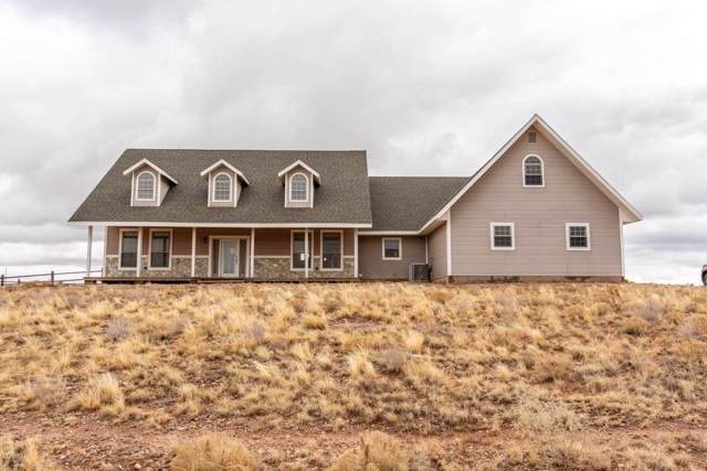 5483 Hay Hollow Road, Snowflake, AZ 85937 (MLS #6006556) :: The Kenny Klaus Team