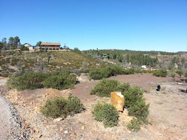 6250 Bull Elk Run, Show Low, AZ 85901 (MLS #6006999) :: neXGen Real Estate