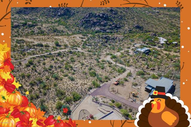 21606030G E Skyline Drive, Cave Creek, AZ 85331 (MLS #6007444) :: Openshaw Real Estate Group in partnership with The Jesse Herfel Real Estate Group
