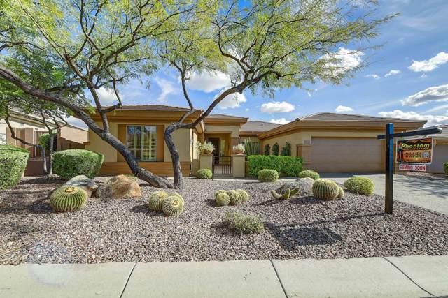 41715 N Shadow Creek Way, Anthem, AZ 85086 (MLS #6009463) :: Scott Gaertner Group