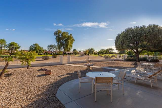 14135 W Whitewood Drive, Sun City West, AZ 85375 (MLS #6009619) :: Long Realty West Valley