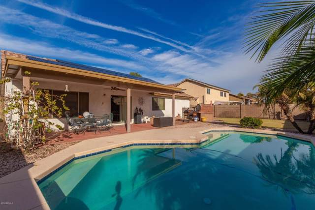 15955 W Adams Street, Goodyear, AZ 85338 (MLS #6010682) :: Brett Tanner Home Selling Team