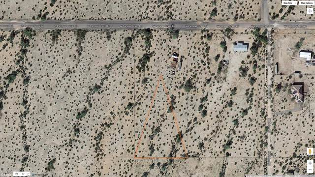 51400 W Pampas Grass Road, Maricopa, AZ 85138 (MLS #6011225) :: The Kenny Klaus Team