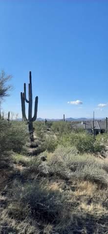 36441 N 58TH Street, Cave Creek, AZ 85331 (MLS #6012252) :: The Bill and Cindy Flowers Team