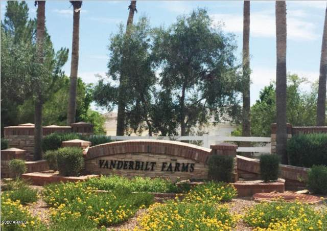 16396 W Watkins Street, Goodyear, AZ 85338 (MLS #6015036) :: Devor Real Estate Associates
