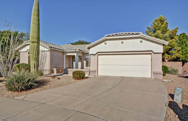 22316 N 147TH Lane, Sun City West, AZ 85375 (MLS #6016540) :: The Kenny Klaus Team
