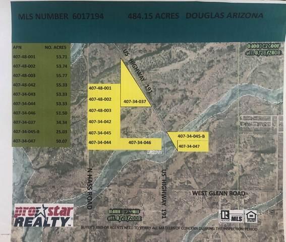 00XX N Haas Road, Douglas, AZ 85607 (MLS #6017194) :: Brett Tanner Home Selling Team
