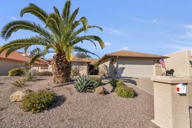26214 S Cloverland Drive, Sun Lakes, AZ 85248 (MLS #6018343) :: The Kenny Klaus Team