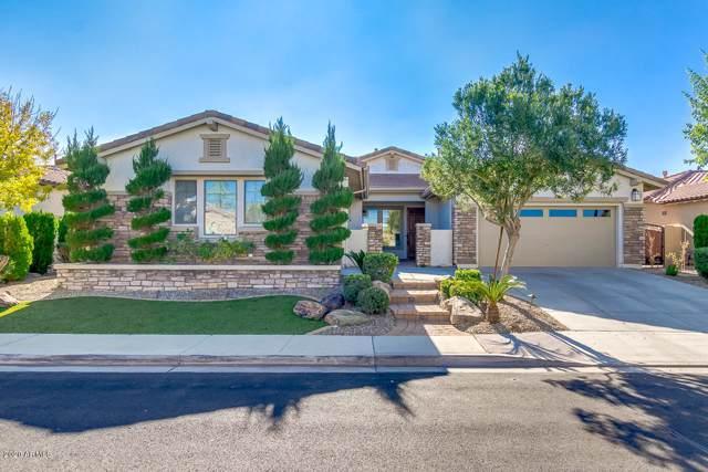 3371 E Virgil Drive, Gilbert, AZ 85298 (MLS #6018725) :: Keller Williams Realty Phoenix