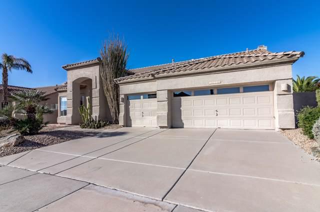 16240 S 1st Street, Phoenix, AZ 85048 (MLS #6018892) :: Yost Realty Group at RE/MAX Casa Grande