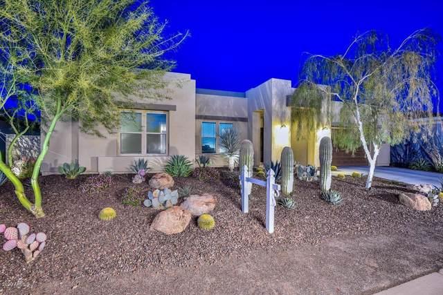 11718 W Dove Wing Way, Peoria, AZ 85383 (MLS #6018967) :: Nate Martinez Team