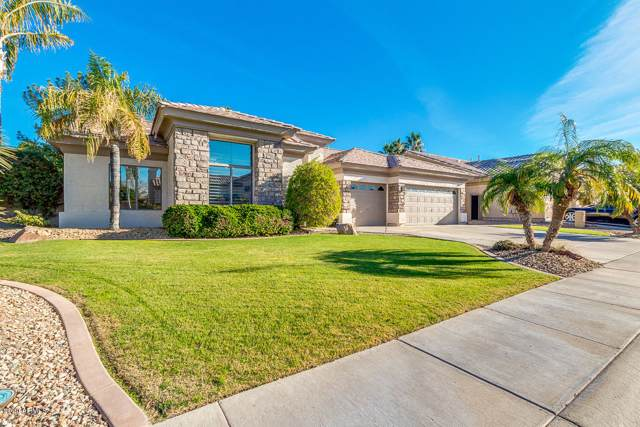 1364 W Rockrose Way, Chandler, AZ 85248 (MLS #6020876) :: Arizona 1 Real Estate Team