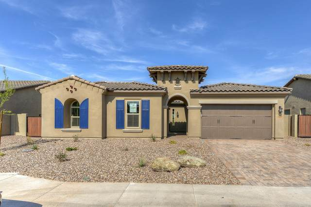22898 N 94TH Lane, Peoria, AZ 85383 (MLS #6021679) :: Arizona Home Group