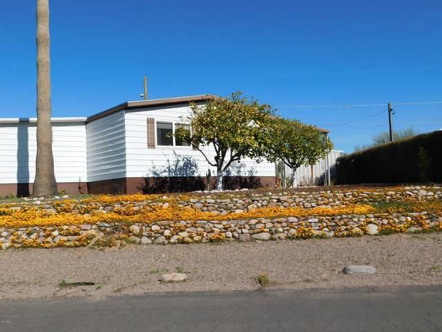 26 E Donna Drive, Queen Valley, AZ 85118 (MLS #6022686) :: Revelation Real Estate