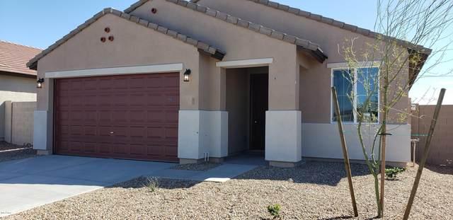 5879 S 247TH Drive, Buckeye, AZ 85326 (MLS #6022964) :: Riddle Realty Group - Keller Williams Arizona Realty