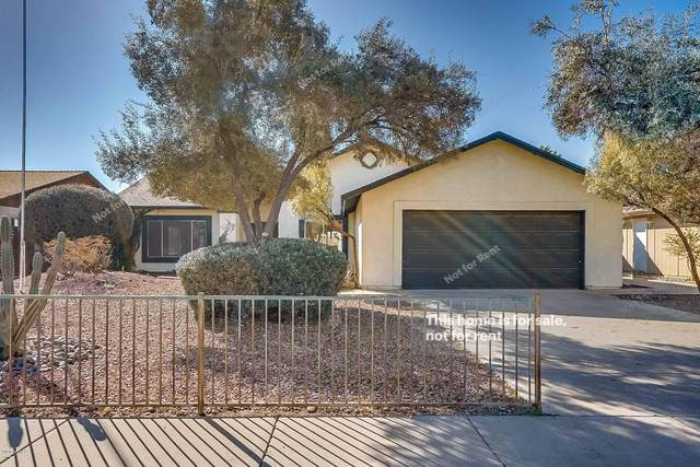 4401 W Piute Avenue, Glendale, AZ 85308 (MLS #6023581) :: The Kenny Klaus Team