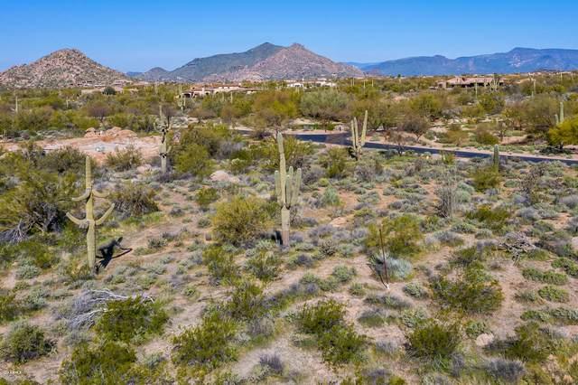 8695 E Old Field Road, Scottsdale, AZ 85266 (MLS #6023612) :: Howe Realty
