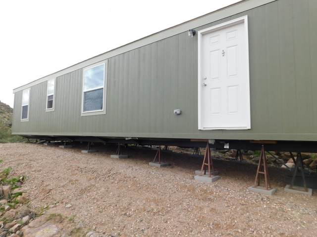 114 S Piedra Negra Drive, Queen Valley, AZ 85118 (MLS #6024248) :: Midland Real Estate Alliance