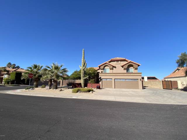 3002 E Nance Street, Mesa, AZ 85213 (MLS #6024676) :: The Kenny Klaus Team