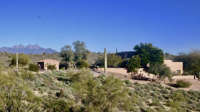 13059 N Vista Del Oro, Fort McDowell, AZ 85264 (MLS #6025209) :: The Kenny Klaus Team